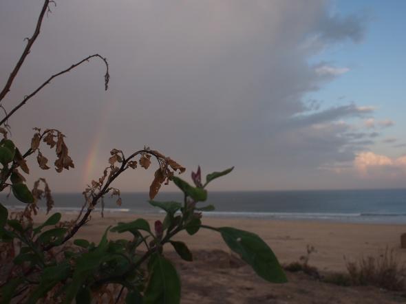 A rainbow captured at Gaza's beach